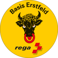 Badge der Basis Erstfeld